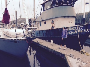 Our new maintenance program involves parking next to boats in distress to lessen the urgency for cleaning and shining.