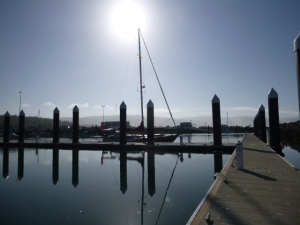 $35 Million worth of marina almost all to our selves.  At $25/night this baby will be paid off in no time.