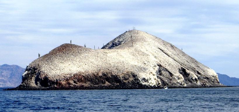 guano-island