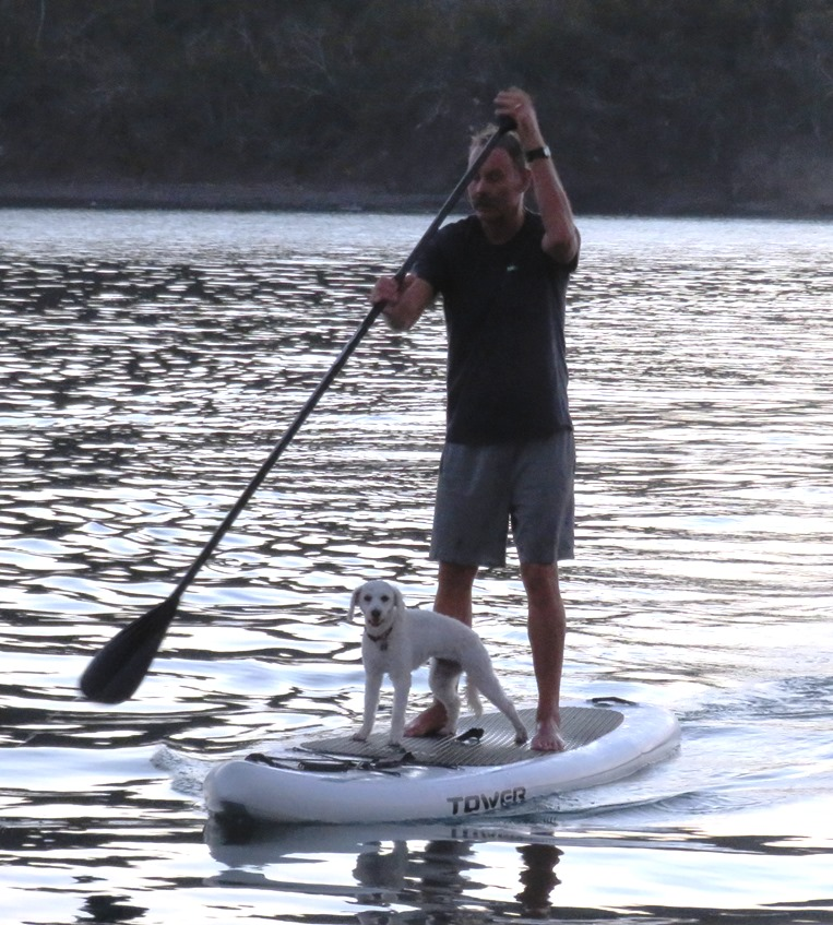 lucy-on-paddle-board