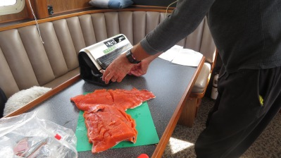 Seal-a-meal worked great when freezing our excess salmon.