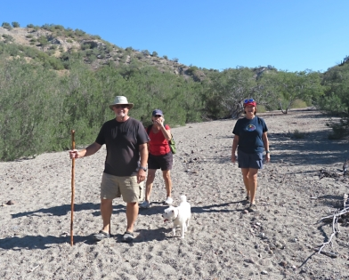 An inland hike from the Mengles de Solo anchorage on San Jose Island with friends. The trail is a 30' wide super highway to the interior of the island.